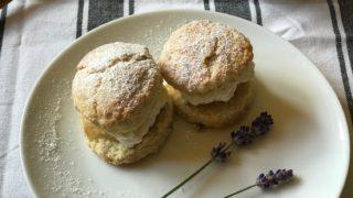 Lavender Scones, Honey Cream Tea